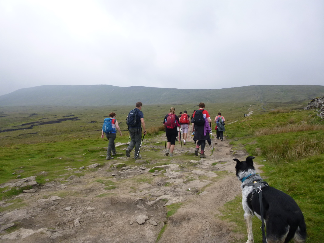Yorkshire 3 peaks guided walk - Whernside